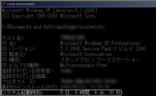 systeminfo 実行後(XP)