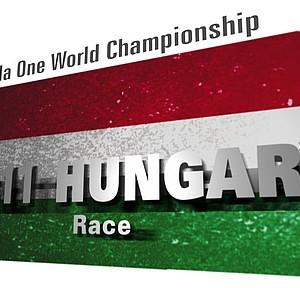 2012年F1グランプリ 第11ラウンド「ハンガリー」