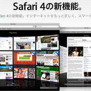 Safari 4正式版リリース後の当サイトへのブラウザシェア